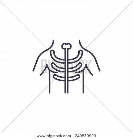 X-ray Examination Line Icon, Vector Illustration. X-ray Examination Linear Concept Sign.