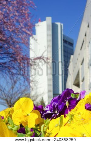 Ankara, Turkey - The Ministry of Foreign Affairs building in springtime