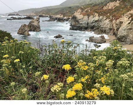 A Beautiful Hiking Trail In Carmel, California.