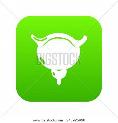 Human Bladder Icon Green Vector Isolated On White Background
