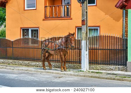 Colorful Orange House With Parked Horse In Rural Transylvania Romania