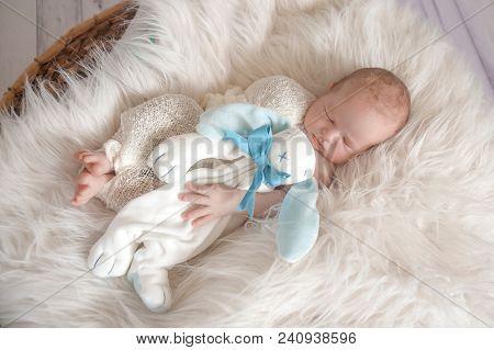 portrait of adorable sleeping newborn baby boy, newborn photography