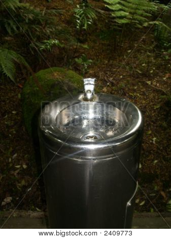 Drinkingfountain In Forest 2