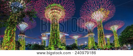 Singapore - April 29, 2018: Panorama Of Supertree Grove With Skybridge At Gardens By The Bay Illumin
