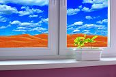 Young plants growing in pot on window-sill. Sandy desert behind window of room. Save the planet. Young plants of oak growing in pot on window sill. Landscape beyond window poster