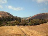 california coastal hills from amtrak coast starlight poster
