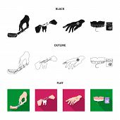 Anesthetic injection, dental instrument, hand manipulation, tooth cleaning and other  icon in black, flat, outline style. bactericidal plaster, medicine icons in set collection. poster
