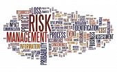 Risk management concept in tag cloud isolated on white poster
