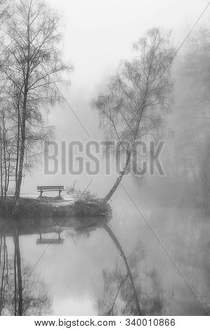 A Foggy Morning On The Bank Of The Pond In The Province 't Veld Domain In Ardooie, Flanders, Belgium