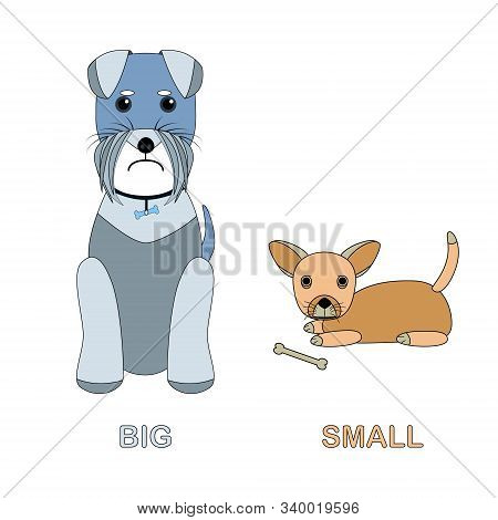 Big Dog And Little Dog. Card For Children - The Study Of Antonyms, Foreign Languages, Dog Breeds. Ca