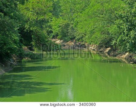 Everywhere Green