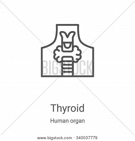 thyroid icon isolated on white background from human organ collection. thyroid icon trendy and moder