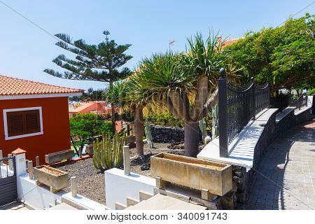 Residential House, Inner Yard With Abundant Vegetation, Candelaria, Tenerife
