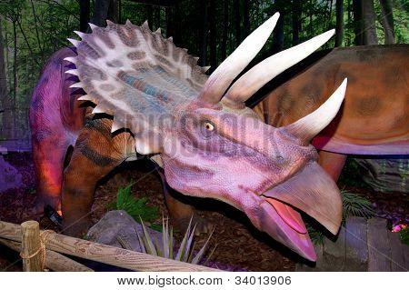 Triceratops, ceratopsian dinosaur