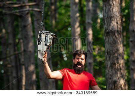 Lumberjack Holding The Chainsaw. Lumberjack Concept. Lumberjack With Chainsaw In His Hands. Lumberja
