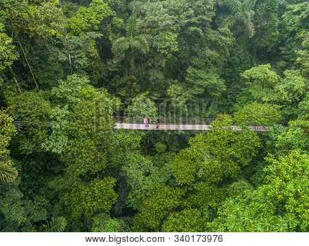 Couple Walking Over Mystico Hanging Bridges At La Fortuna Rainforest Aerial Drone View In Costa Rica