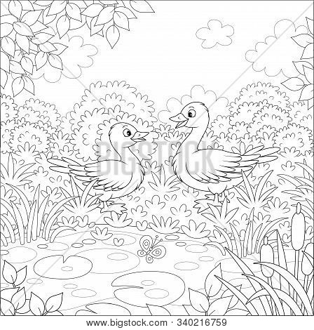 Wild Geese Near A Small Lake On A Meadow On A Beautiful Summer Day, Black And White Vector Cartoon I