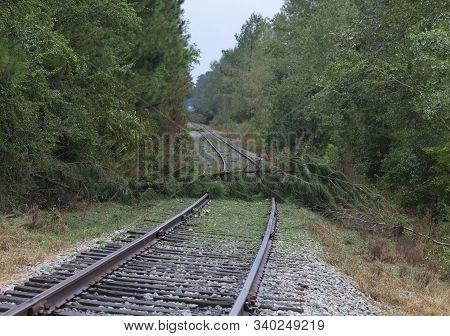 North Carolina Railroad Tracks Blocked By Trees After Hurricane Florence