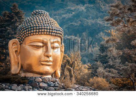 The Big Head Of Buddha Statue In Waujeongsa Temple Of South Korea, Landmark Of South Korea, Travel O