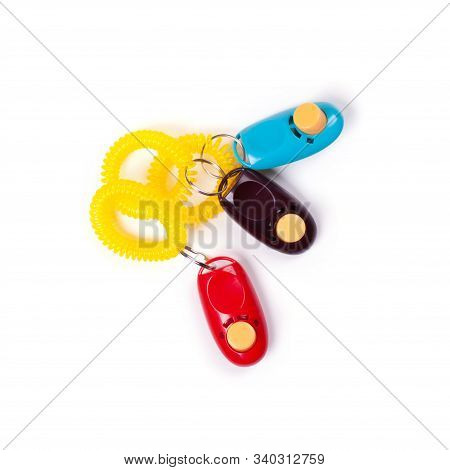 Some Colorful Clickers For Traning Dog With Reward Stimulation. Flat Lay. Place For Text.