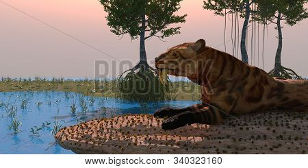 Saber-toothed Cat In Swamp 3d Illustration - During The Pleistocene And Eocene Periods Of North Amer