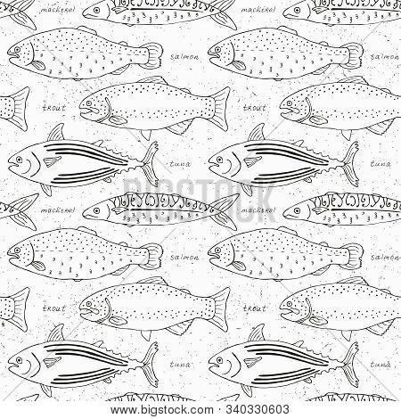 Fish Seamless Background. Mackerel, Salmon, Tuna, Trout Sketch Design. Vector Illustration.