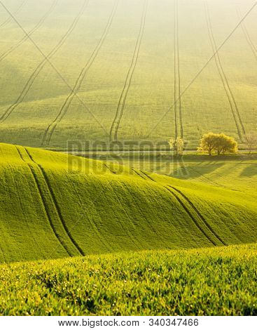Majestic rural landscape in sunny day. Beautiful sunlight on the wavy fields. Location place of South Moravia region, Czech Republic, Europe. Photo of ecology concept. Discover the beauty of earth.