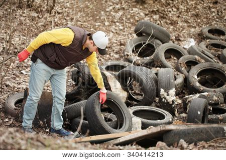 Volunteer Removes Car Tires From The Park. Environmental Pollution, Outdoor Trash And Rubbish.
