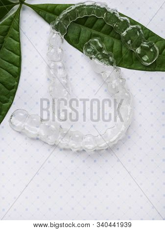 Orthodontic Clear Aligner To Straighten Teeth With Green Leaves, Green Good Plastic Concept
