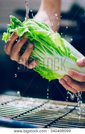 Mans Hands Washing Chinese Cabbage. First Stage Of Preparing Salad. Eat Well And Stay Healthy.