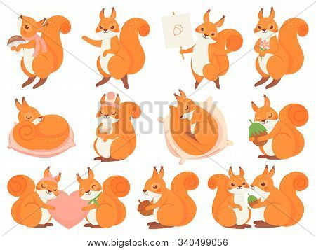 Cute Squirrel Cartoon Mascot. Couple Squirrels Love, Squirrel With Nut, Mushroom And Coffee Cup. Fun