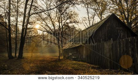 Old Abandoned House In The Autumn Morning Forest