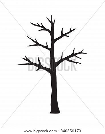 Vector Black Hand Drawn Doodle Sketch Naked Tree Silhouette Isolated On White Background
