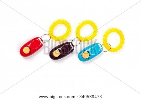 Some Colorful Clickers For Traning Dog With Positive Reinforcement. Flat Lay. Place For Text.