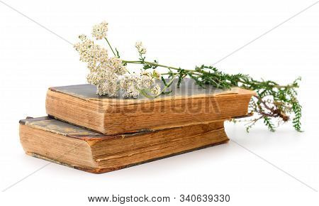 Yarrow (achillea Millefolium) And Two Books Isolated On White Background.