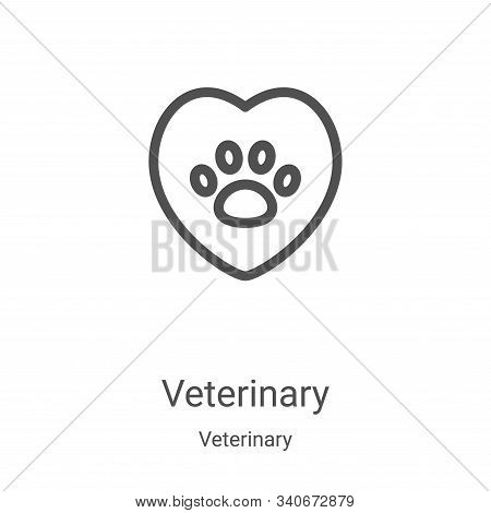 veterinary icon isolated on white background from veterinary collection. veterinary icon trendy and