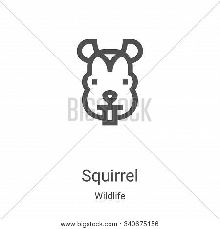 squirrel icon isolated on white background from wildlife collection. squirrel icon trendy and modern