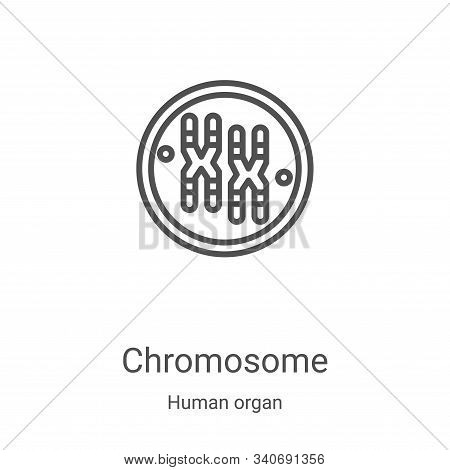 chromosome icon isolated on white background from human organ collection. chromosome icon trendy and