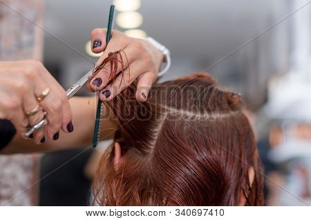 Woman Getting A New Haircut. Female Hairstylist Cutting Hair With Scissors In Hair Salon. Hairdresse