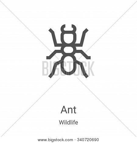 ant icon isolated on white background from wildlife collection. ant icon trendy and modern ant symbo