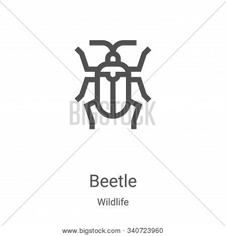 beetle icon isolated on white background from wildlife collection. beetle icon trendy and modern bee