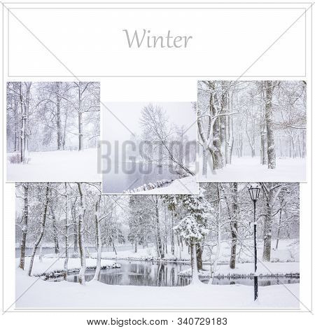 Collage Winter Snow Park . Alleys Of The Park. Nature. Winter Nature. Winter Pictures. Snow. Landsca