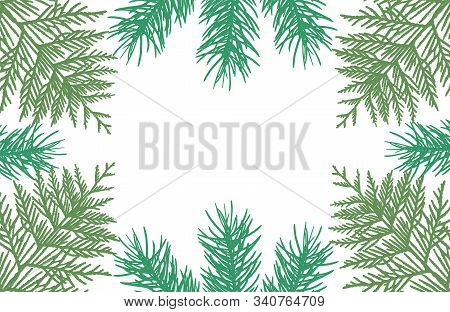 Frame Of Branches Of Fir Trees And Thuja, Silhouettes. Applied Clipping Mask. Vector Illustration.