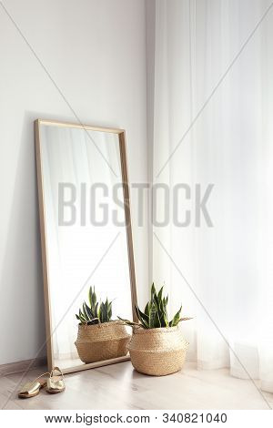Large Mirror And Potted Plant Near Window In Light Room
