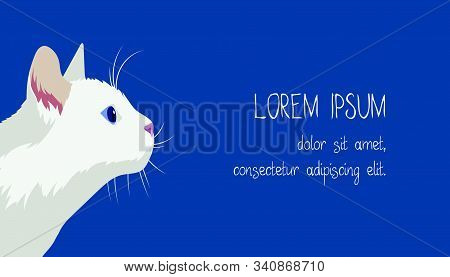 Business Cards Template With Profile Portrait Of A White Cat On A Blue Background. Flat Style Illust