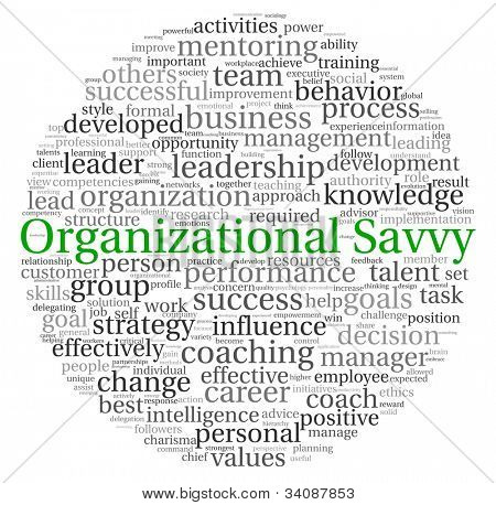 Organizational Savvy concept in word tag cloud on white background