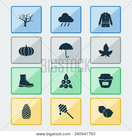 Seasonal Icons Set With Jam, Coat, Rain And Other Filbert Elements. Isolated Vector Illustration Sea