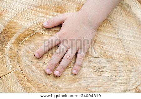 Kinder Hand befindet sich auf einem alten Baumstumpf