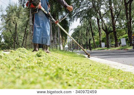 Male Worker With Grass Cutter / Brush Cutter Cut Grass. Gardening Concept.