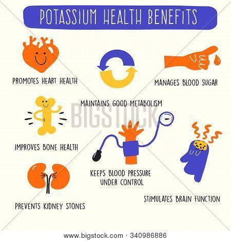 Potassium Health Benefits. Infographics Poster. Vector Illustration.
